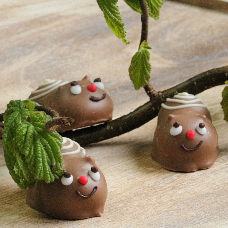 Schnecke aus Schokolade