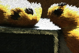 gebackene Vögelchen
